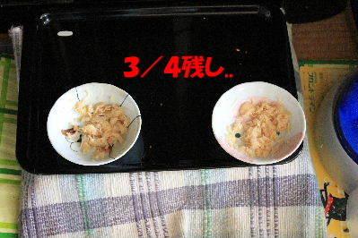 2012年5月エビ4-4.JPG