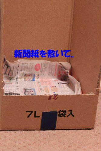 2012年5月改修4.JPG