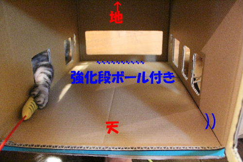 2012年5月3号2-4.JPG