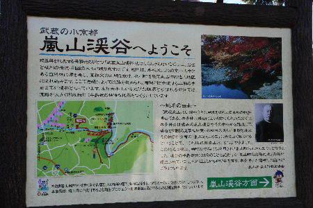 嵐山1-1.JPG