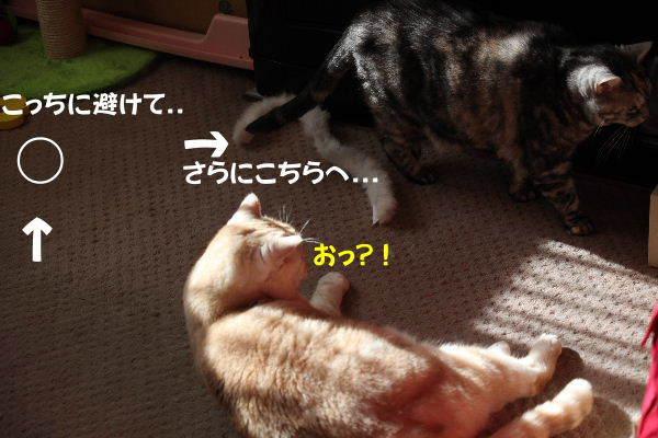 IMG_7700.JPG