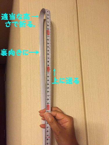 IMG_8656.JPG