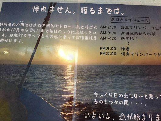 IMG_5668.JPG